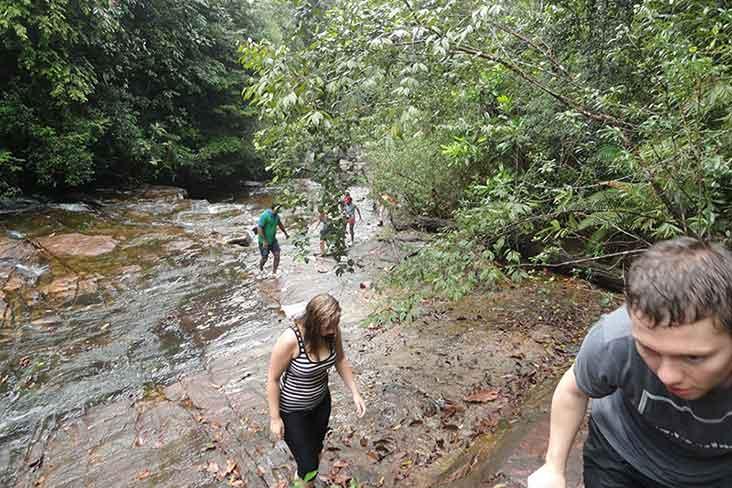 Nature Trekking Kitulgala
