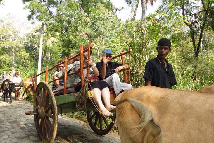 Trekking Village Hiriwaduna