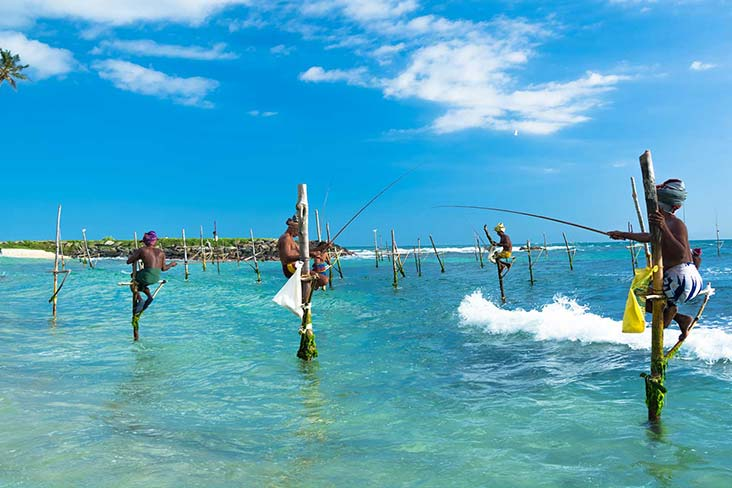 Stilt Fishing Mirissa